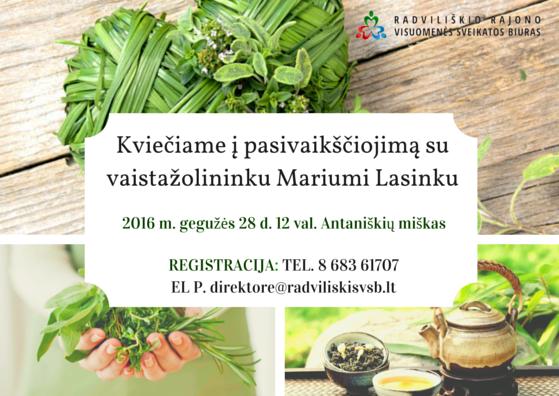 Pasivaikščiojimas su vaistažolininku Mariumi Lasinksu